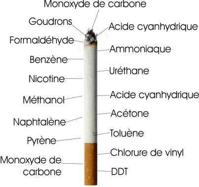 anatomie d'une cigarette